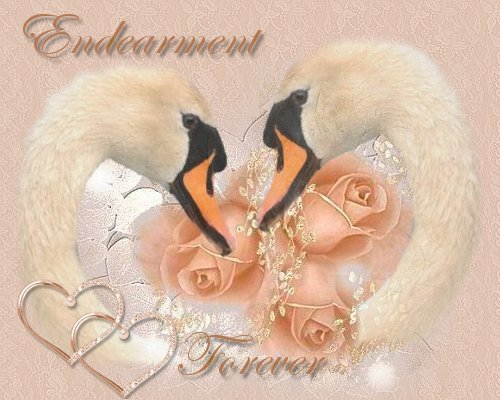 Sygnet swan graphics endearment of love wedding swan graphics