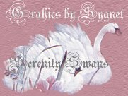 Swan Graphics by Sygnet,serenity Swans,swan backgrounds