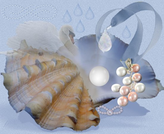 sygnet swan graphics,sea pearls of love web set
