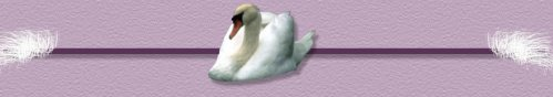 sygnets swan graphics barline